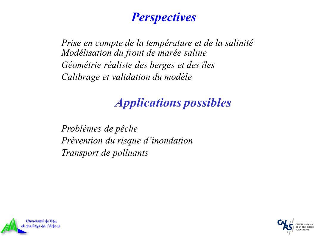 Perspectives Prise en compte de la température et de la salinité Modélisation du front de marée saline Géométrie réaliste des berges et des îles Calib