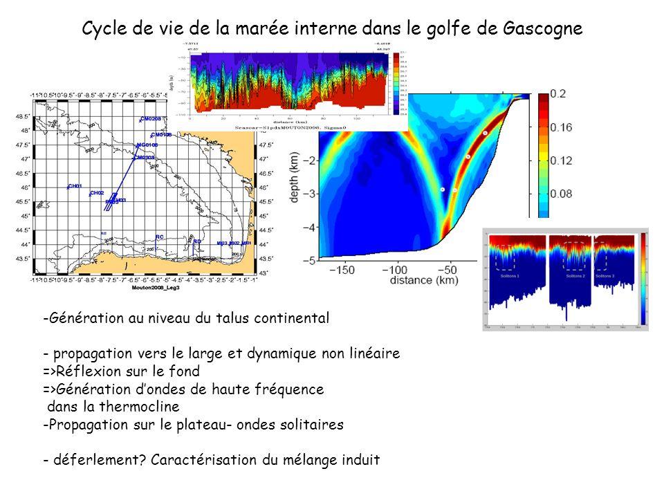 Cycle de vie de la marée interne dans le golfe de Gascogne -Génération au niveau du talus continental - propagation vers le large et dynamique non lin