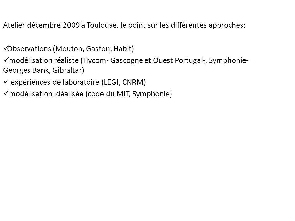 Atelier décembre 2009 à Toulouse, le point sur les différentes approches: Observations (Mouton, Gaston, Habit) modélisation réaliste (Hycom- Gascogne et Ouest Portugal-, Symphonie- Georges Bank, Gibraltar) expériences de laboratoire (LEGI, CNRM) modélisation idéalisée (code du MIT, Symphonie)