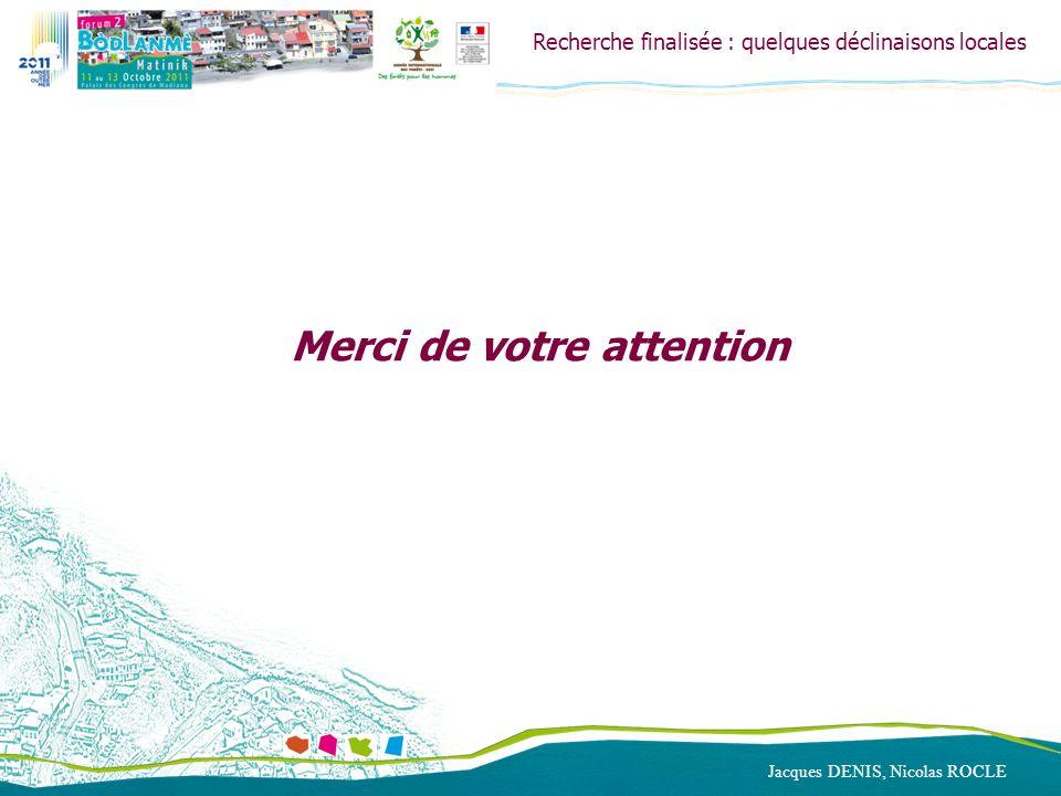 Recherche finalisée : quelques déclinaisons locales Merci de votre attention Jacques DENIS, Nicolas ROCLE