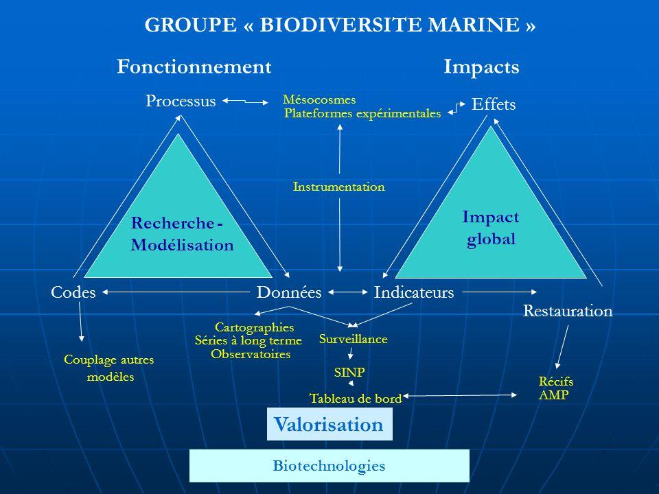 Séminaire Brest, 2-3 avril 2008 Les grandes enjeux de recherches scientifiques Caractérisation de la biodiversité par une surveillance opérationnelle Mise en œuvre de façon pluridisciplinaire de lapproche écosystémique Développer la modélisation fonctionnelle de la biodiversité et létude de la résilience des écosystèmes face aux évolutions des vecteurs dimpact Développer les biotechnologies marines