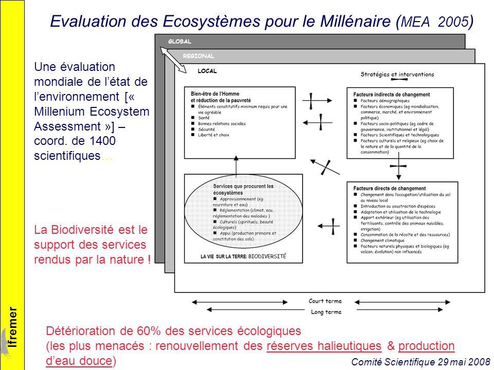 lfremer Evaluation des Ecosystèmes pour le Millénaire ( MEA 2005 ) Une évaluation mondiale de létat de lenvironnement [« Millenium Ecosystem Assessment »] – coord.
