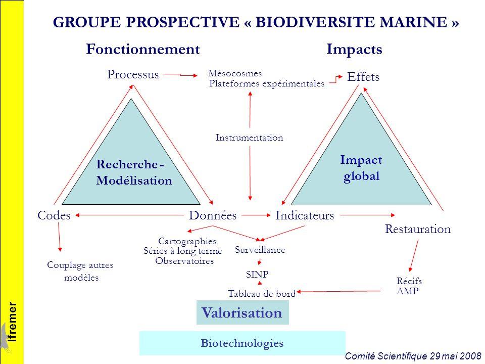 Aborder la question de la biodiversité fonctionnelle via des sites ateliers (écosystèmes – écorégions types) et / ou à partir de thématiques particulières (e.g.