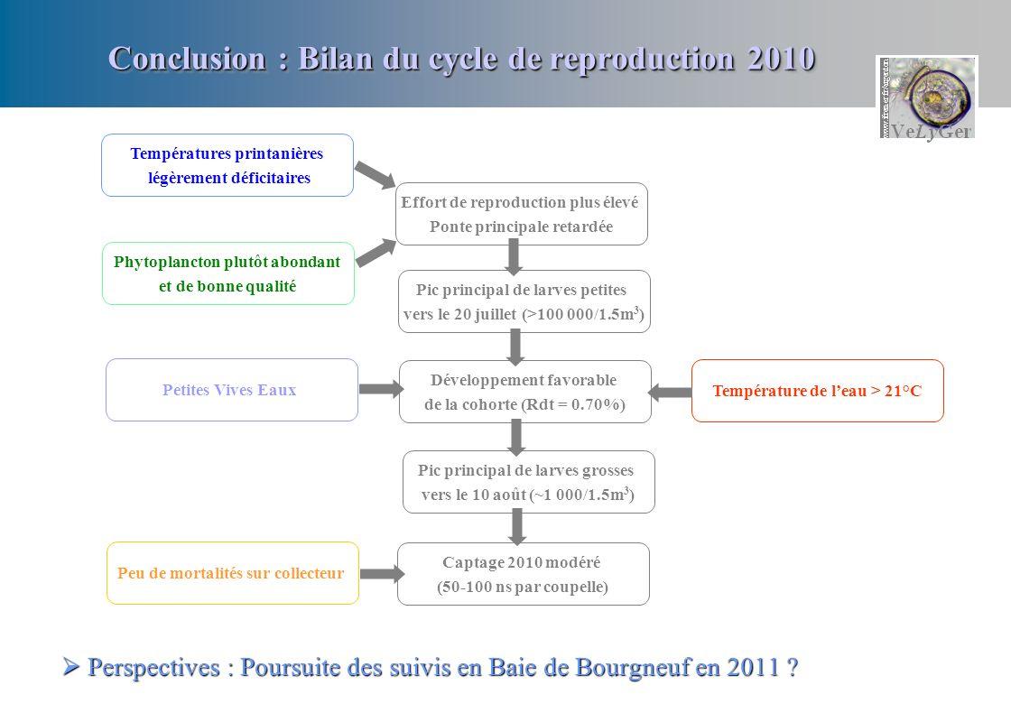 Conclusion : Bilan du cycle de reproduction 2010 Perspectives : Poursuite des suivis en Baie de Bourgneuf en 2011 .