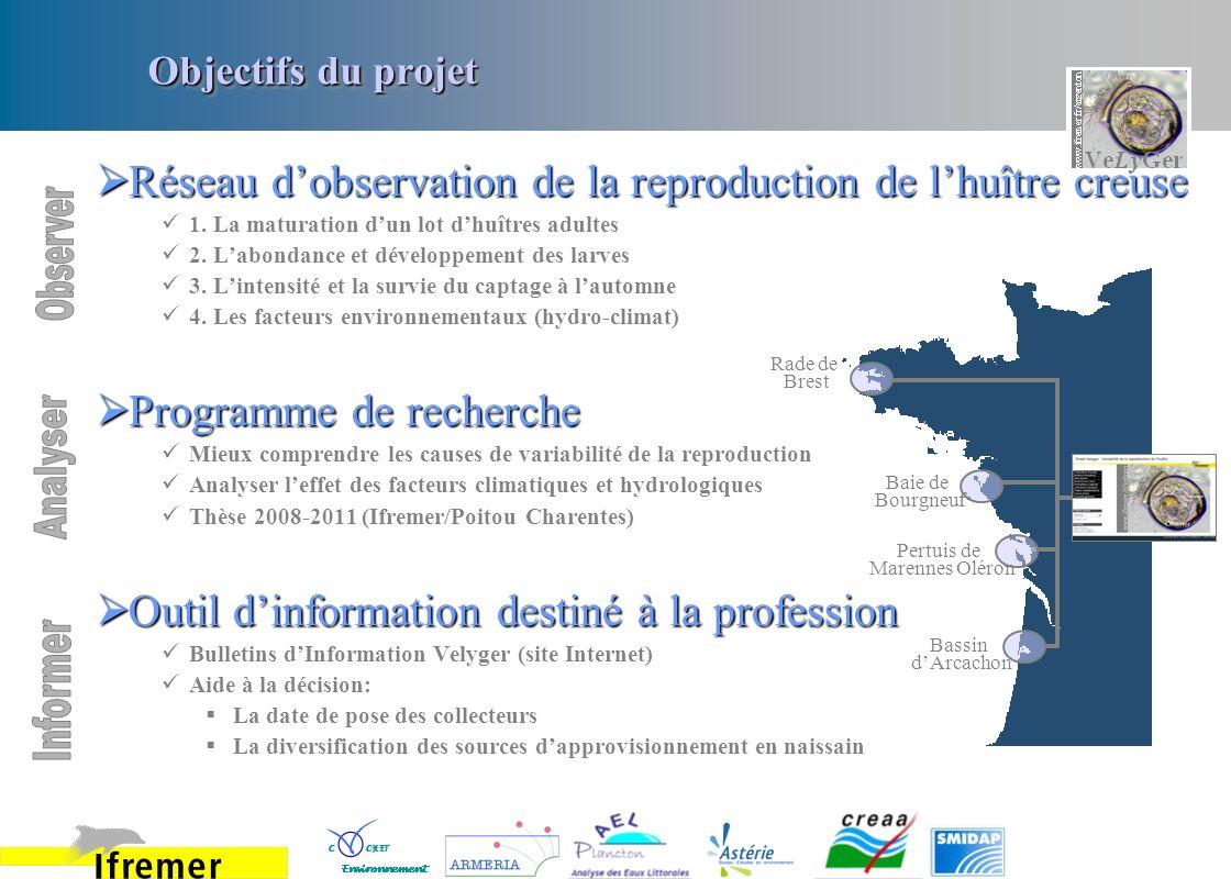 Objectifs du projet Rade de Brest Baie de Bourgneuf Pertuis de Marennes Oléron Bassin dArcachon Réseau dobservation de la reproduction de lhuître creu