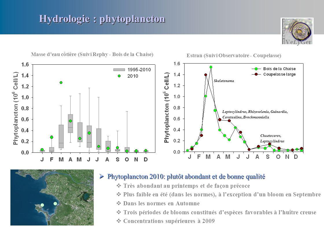 Hydrologie : phytoplancton Phytoplancton 2010: plutôt abondant et de bonne qualité Phytoplancton 2010: plutôt abondant et de bonne qualité Très abonda