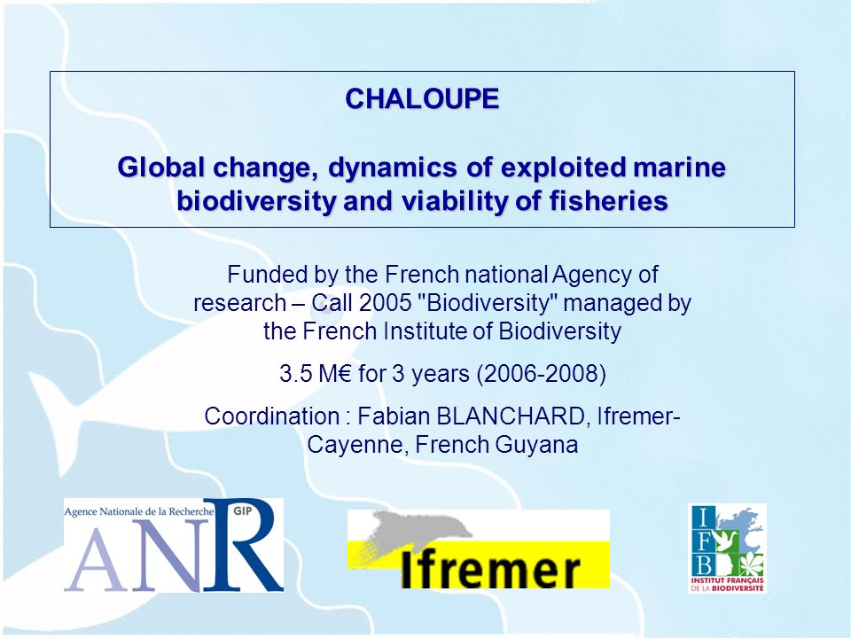 CHALOUPE Global change, dynamics of exploited marine biodiversity and viability of fisheries Funded by the French national Agency of research – Call 2005 Biodiversity managed by the French Institute of Biodiversity 3.5 M for 3 years (2006-2008) Coordination : Fabian BLANCHARD, Ifremer- Cayenne, French Guyana