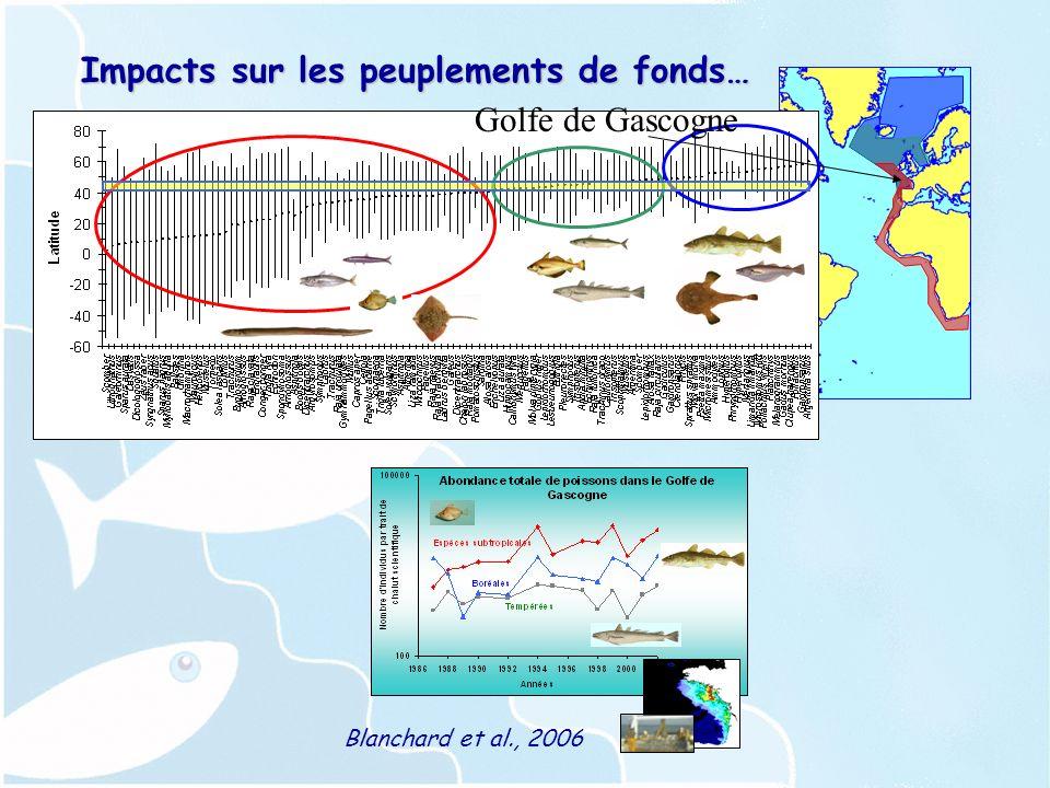 Impacts sur les peuplements de fonds… Golfe de Gascogne Blanchard et al., 2006