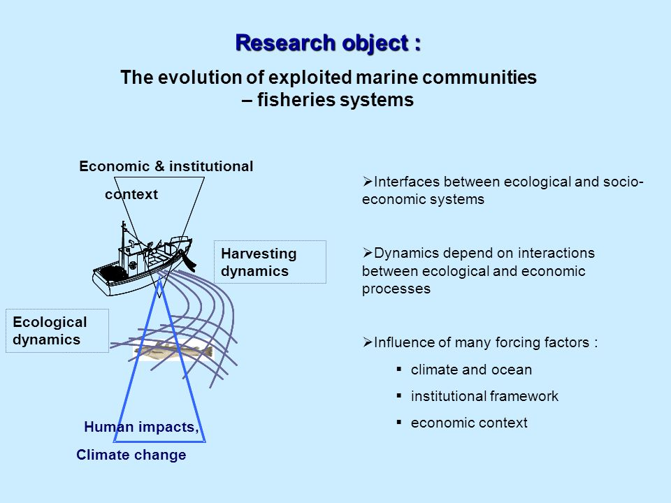 identify the main drivers of bio-economic changes in three systems over the past decades Contribute to the definition of scenarios of future changes in these three systems Objective Temperate continental shelf of the Bay of Biscay Moroccan upwelling areaAmazonian continental shelf of the French Guyana