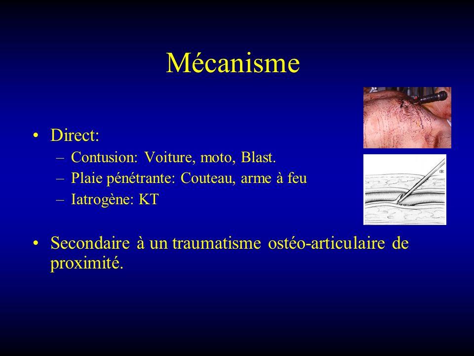LESIONS ARTERIELLES Section ou Plaie latérale : symptomatologies –Hémorragie extériorisé ou non, hématome.