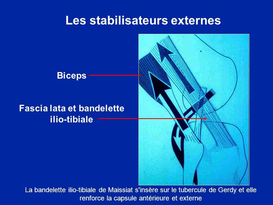 Face externe du genou (la bandelette de Maissiat a été excisée) Tendon du quadriceps Tendon du biceps Tendon rotulien Document F Bonnel