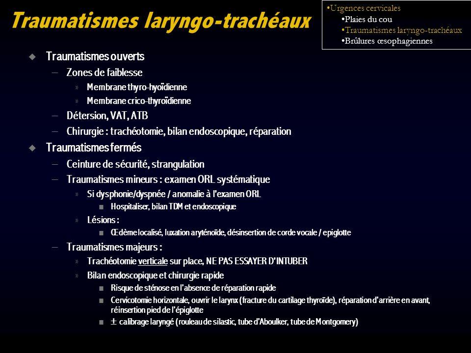 Traumatismes laryngo-trachéaux Traumatismes ouverts – Zones de faiblesse » Membrane thyro-hyoïdienne » Membrane crico-thyroïdienne – Détersion, VAT, A