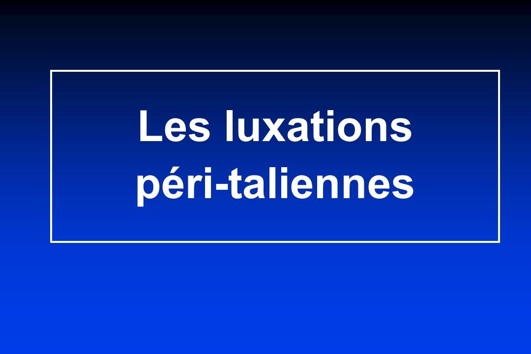 2 articulations + Sinus du tarse Rappel anatomique Dessins JL Besse