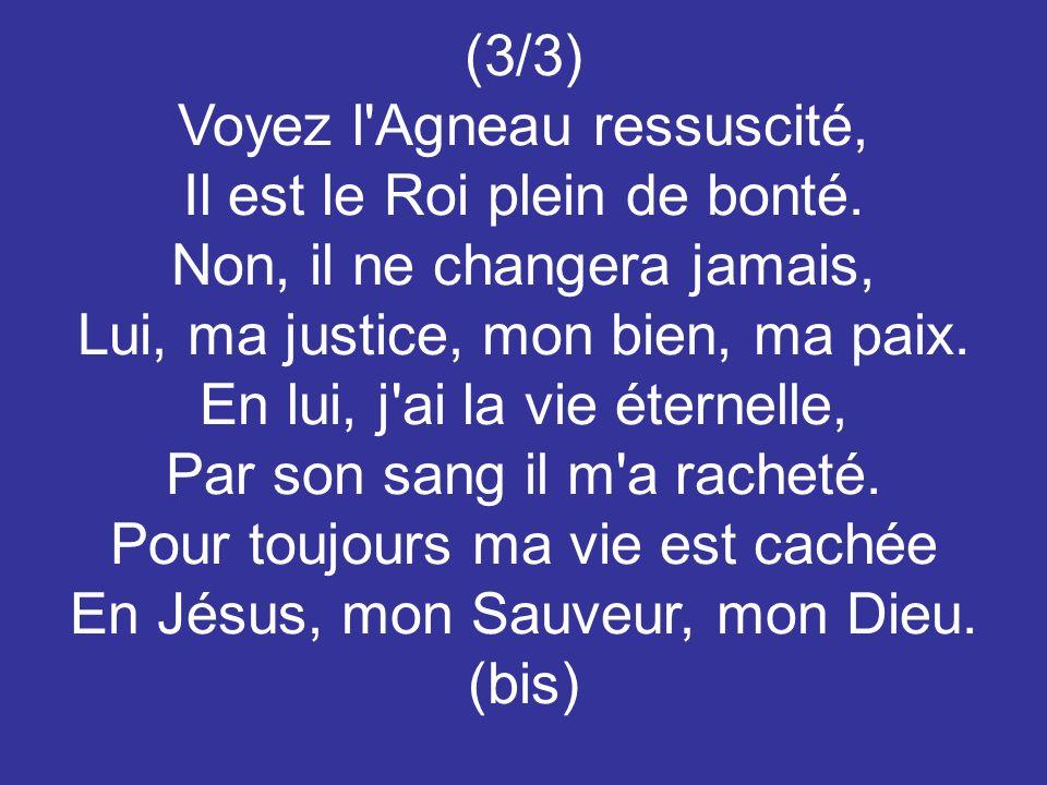 (3/3) Voyez l'Agneau ressuscité, Il est le Roi plein de bonté. Non, il ne changera jamais, Lui, ma justice, mon bien, ma paix. En lui, j'ai la vie éte