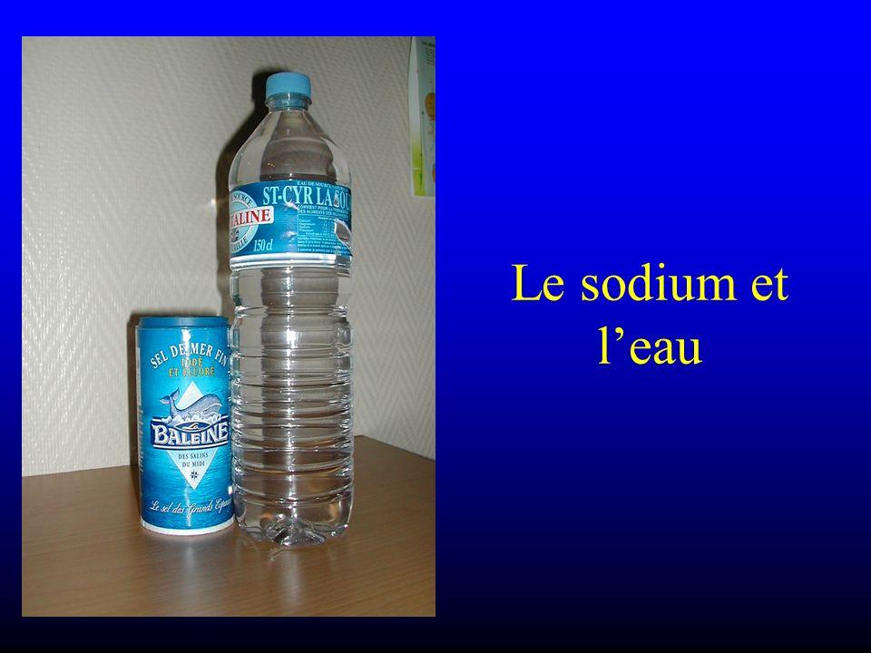 Le sodium et leau