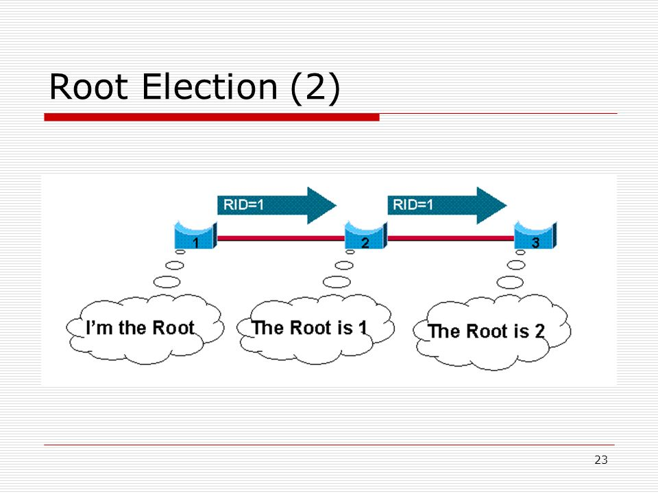 23 Root Election (2)