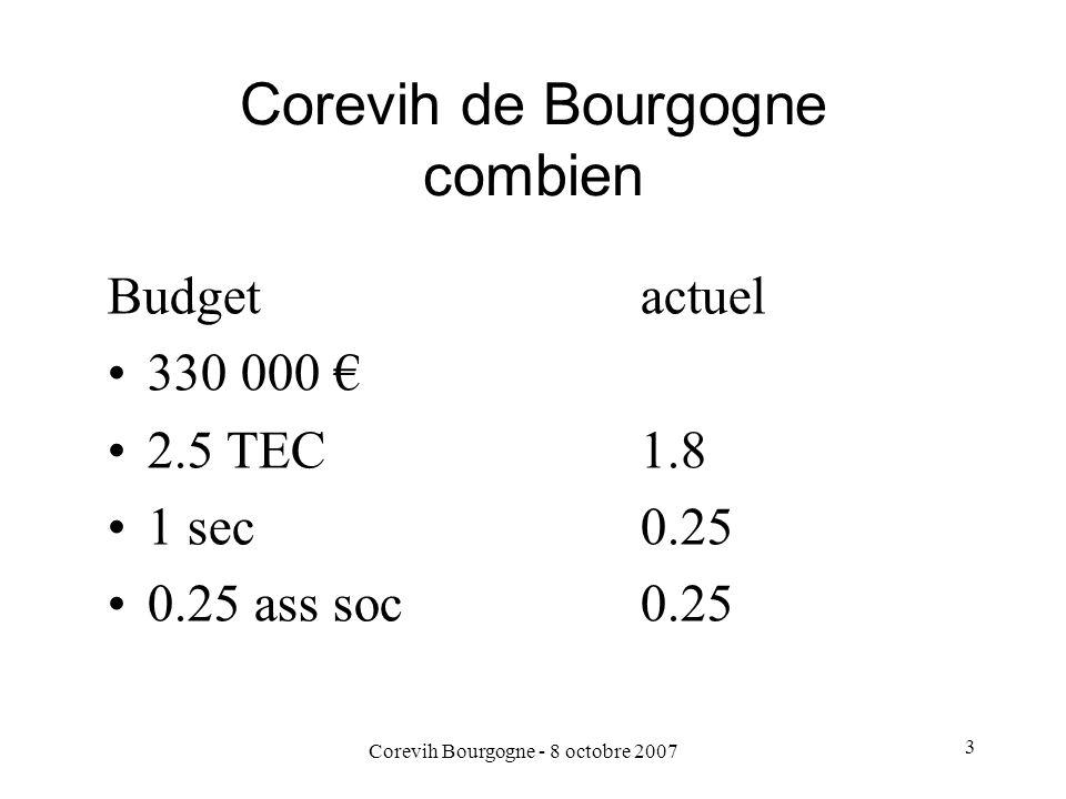 Corevih Bourgogne - 8 octobre 2007 3 Corevih de Bourgogne combien Budgetactuel 330 000 2.5 TEC1.8 1 sec0.25 0.25 ass soc0.25