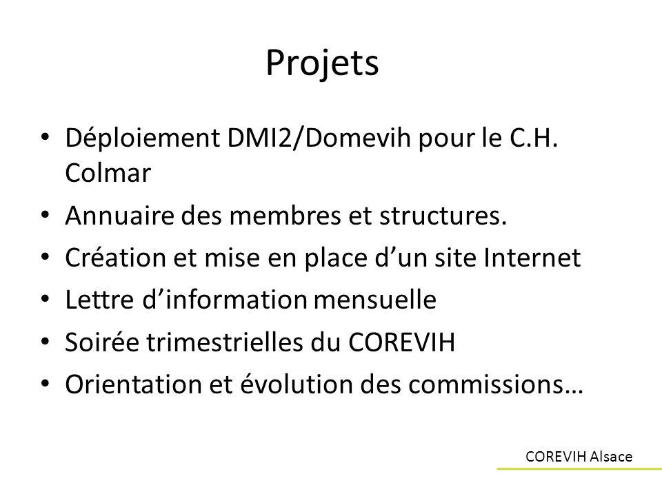 Projets Déploiement DMI2/Domevih pour le C.H. Colmar Annuaire des membres et structures. Création et mise en place dun site Internet Lettre dinformati