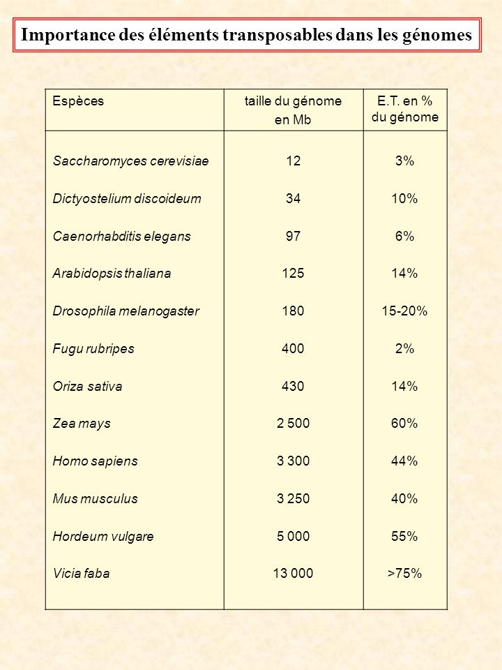 Espècestaille du génome en Mb E.T. en % du génome Saccharomyces cerevisiae Dictyostelium discoideum Caenorhabditis elegans Arabidopsis thaliana Drosop