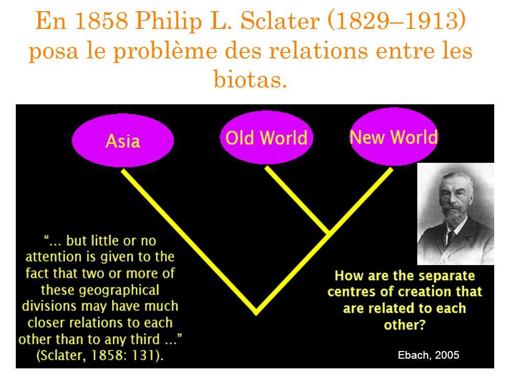 En 1858 Philip L. Sclater (1829–1913) posa le problème des relations entre les biotas. Ebach, 2005