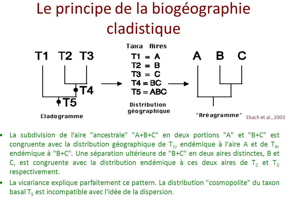 Le principe de la biogéographie cladistique La subdivision de laire