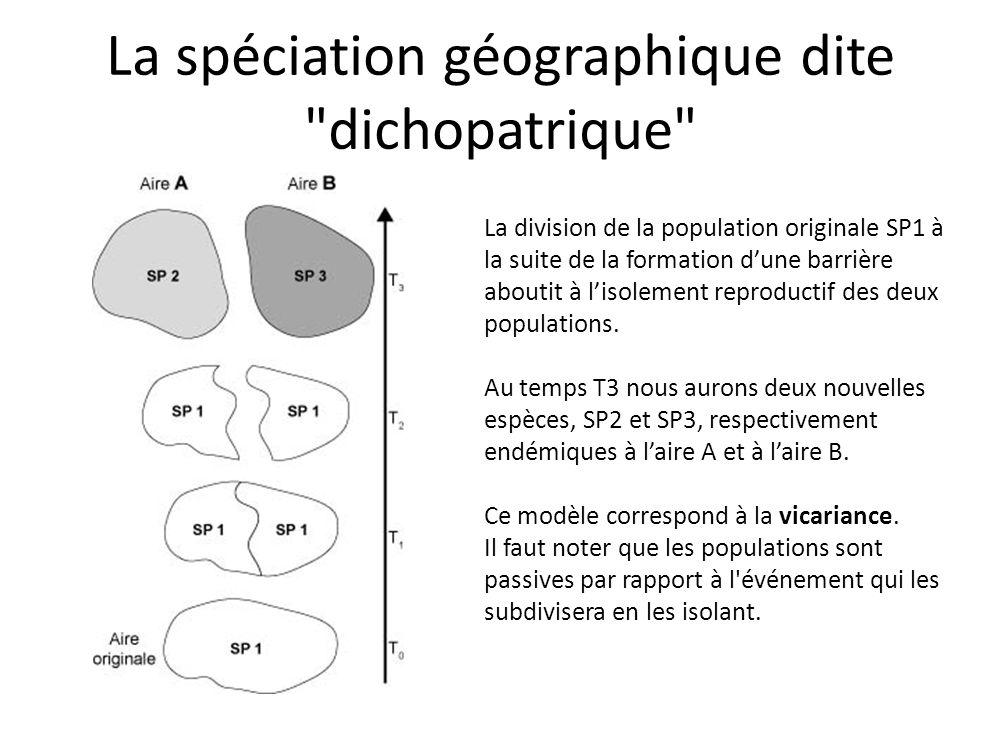 La spéciation géographique dite