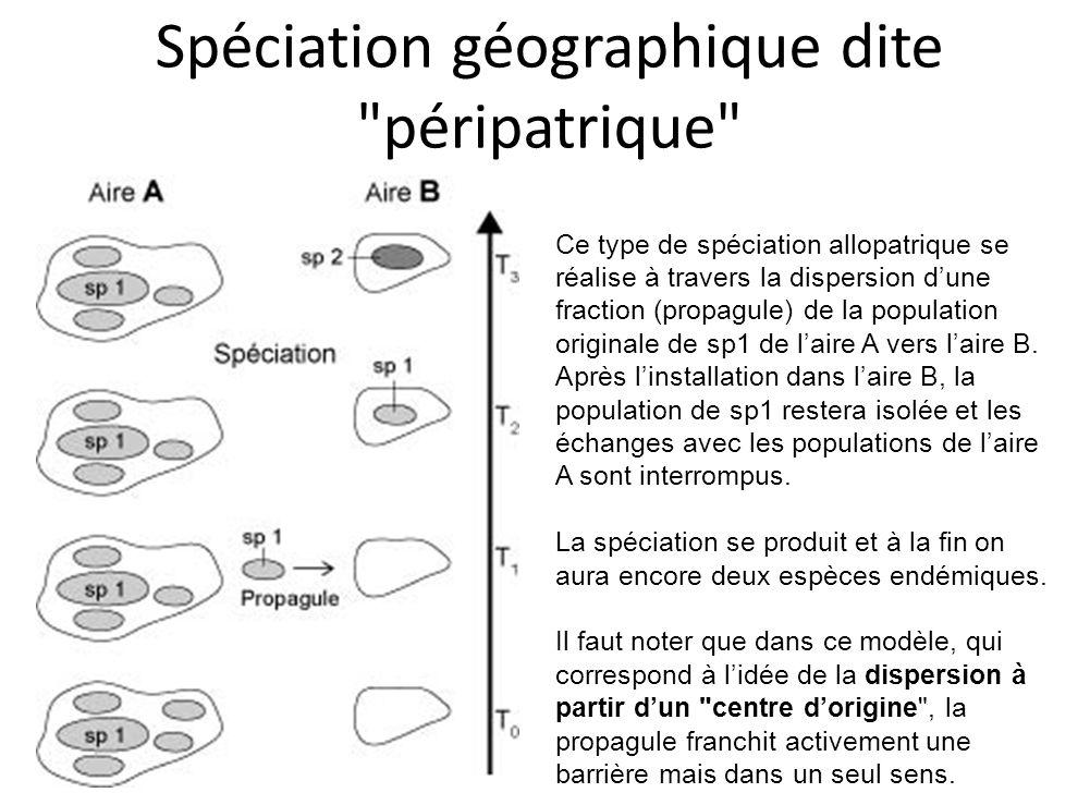 Spéciation géographique dite