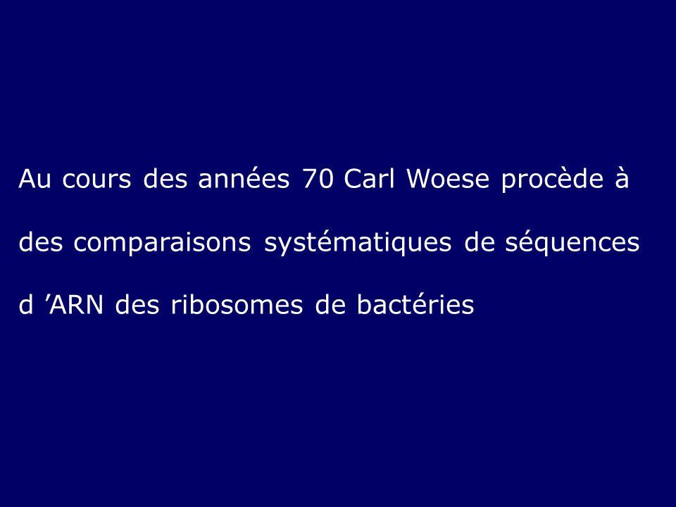 Au cours des années 70 Carl Woese procède à des comparaisons systématiques de séquences d ARN des ribosomes de bactéries