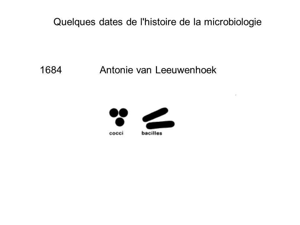 Quelques dates de l'histoire de la microbiologie 1684Antonie van Leeuwenhoek