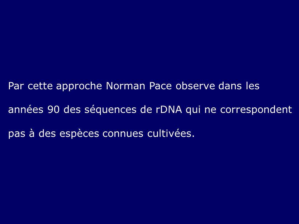 Par cette approche Norman Pace observe dans les années 90 des séquences de rDNA qui ne correspondent pas à des espèces connues cultivées.