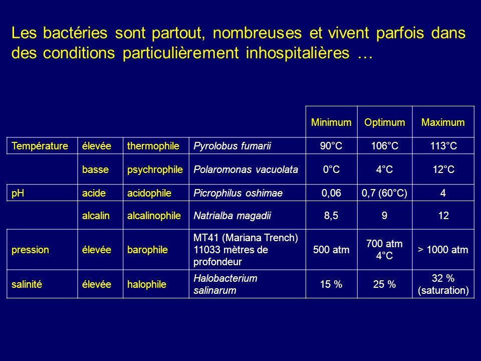 MinimumOptimumMaximum TempératureélevéethermophilePyrolobus fumarii90°C106°C113°C bassepsychrophilePolaromonas vacuolata0°C4°C12°C pHacideacidophilePi