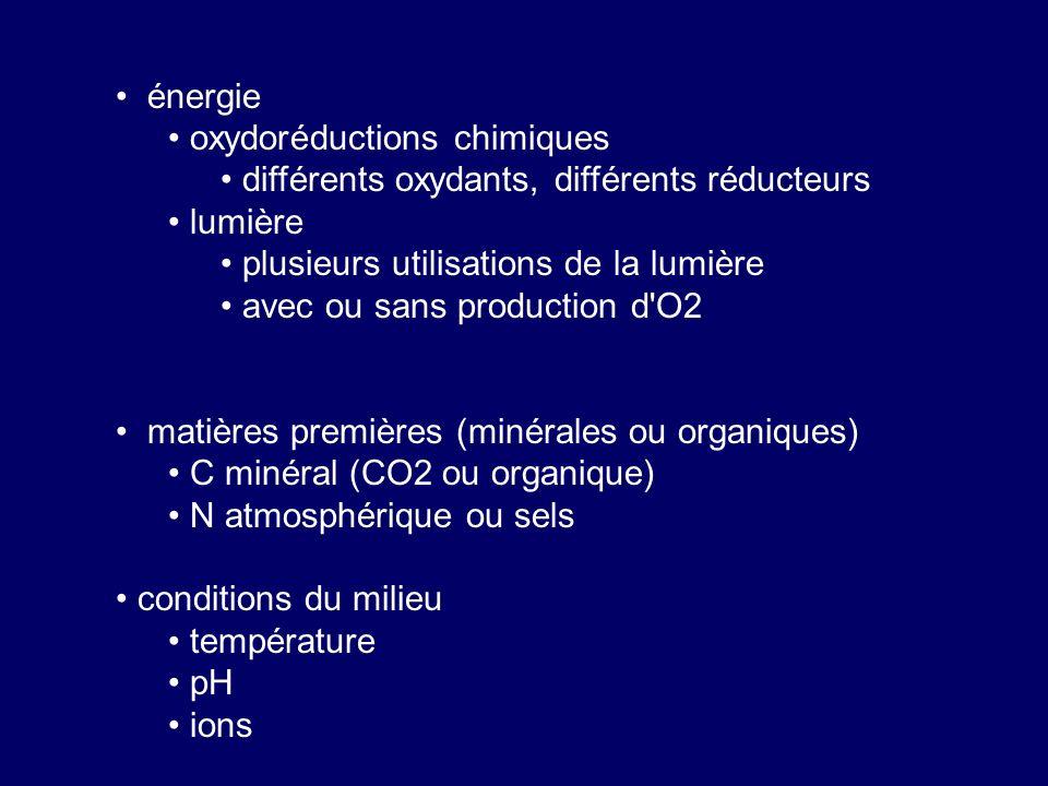 énergie oxydoréductions chimiques différents oxydants, différents réducteurs lumière plusieurs utilisations de la lumière avec ou sans production d'O2