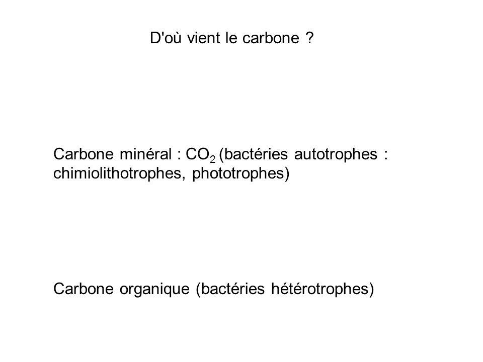 D'où vient le carbone ? Carbone minéral : CO 2 (bactéries autotrophes : chimiolithotrophes, phototrophes) Carbone organique (bactéries hétérotrophes)