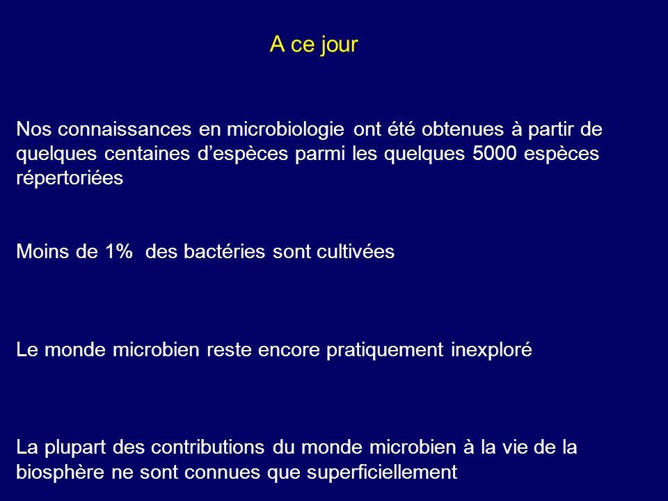 Nos connaissances en microbiologie ont été obtenues à partir de quelques centaines despèces parmi les quelques 5000 espèces répertoriées Moins de 1% d