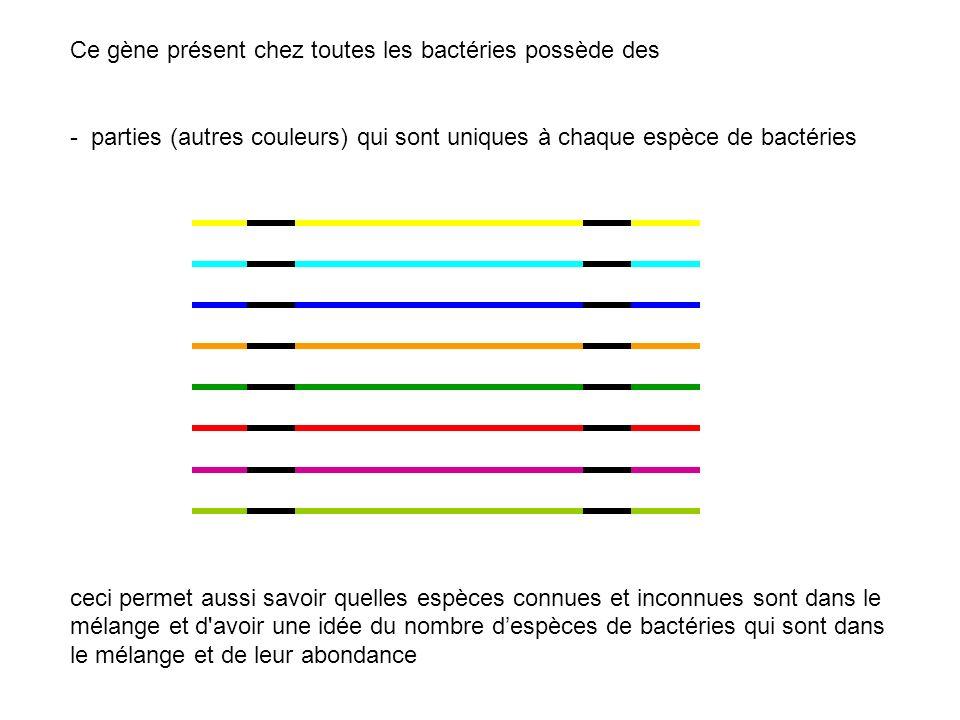 Ce gène présent chez toutes les bactéries possède des - parties (autres couleurs) qui sont uniques à chaque espèce de bactéries ceci permet aussi savo