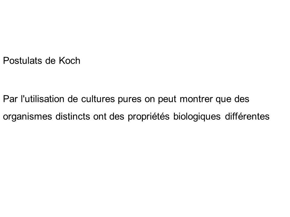 Postulats de Koch Par l'utilisation de cultures pures on peut montrer que des organismes distincts ont des propriétés biologiques différentes