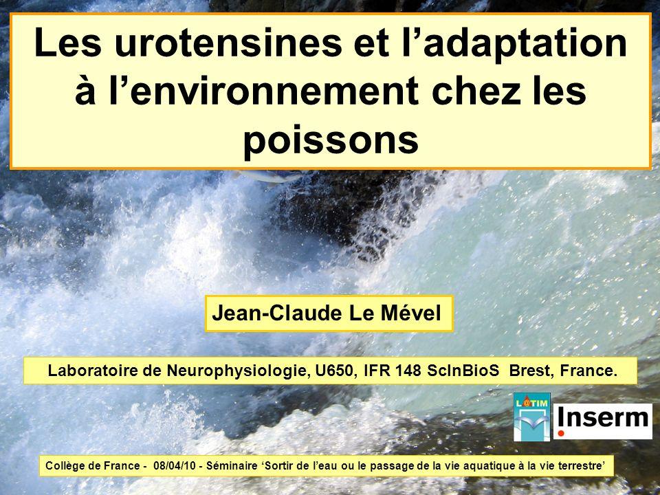 Les urotensines et ladaptation à lenvironnement chez les poissons Laboratoire de Neurophysiologie, U650, IFR 148 ScInBioS Brest, France. Jean-Claude L
