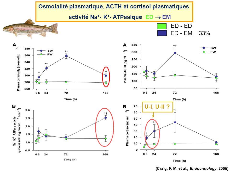 ED - EM Osmolalité plasmatique, ACTH et cortisol plasmatiques activité Na + - K + - ATPasique ED EM ED - ED (Craig, P. M. et al., Endocrinology, 2005)