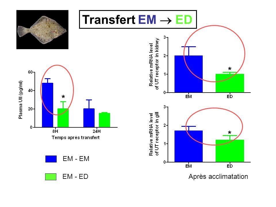 EM - EM EM - ED Transfert EM ED Après acclimatation * * *