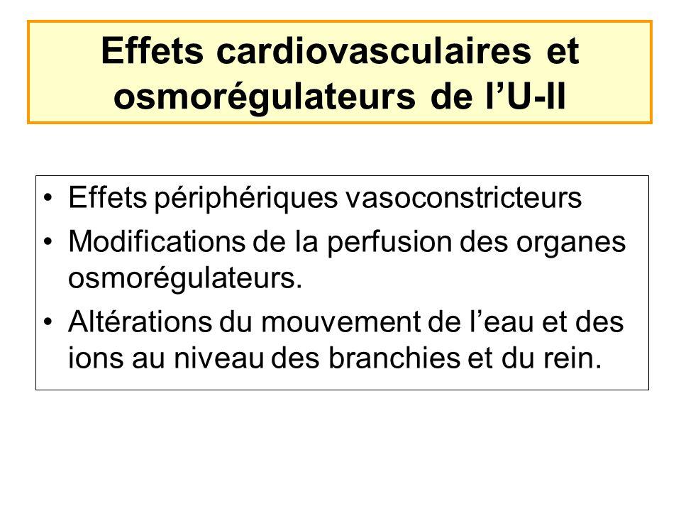 Effets périphériques vasoconstricteurs Modifications de la perfusion des organes osmorégulateurs. Altérations du mouvement de leau et des ions au nive
