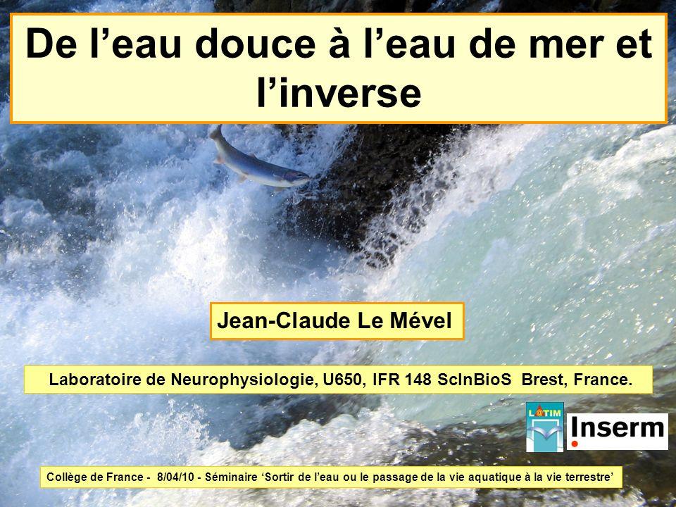 De leau douce à leau de mer et linverse Laboratoire de Neurophysiologie, U650, IFR 148 ScInBioS Brest, France. Jean-Claude Le Mével Collège de France
