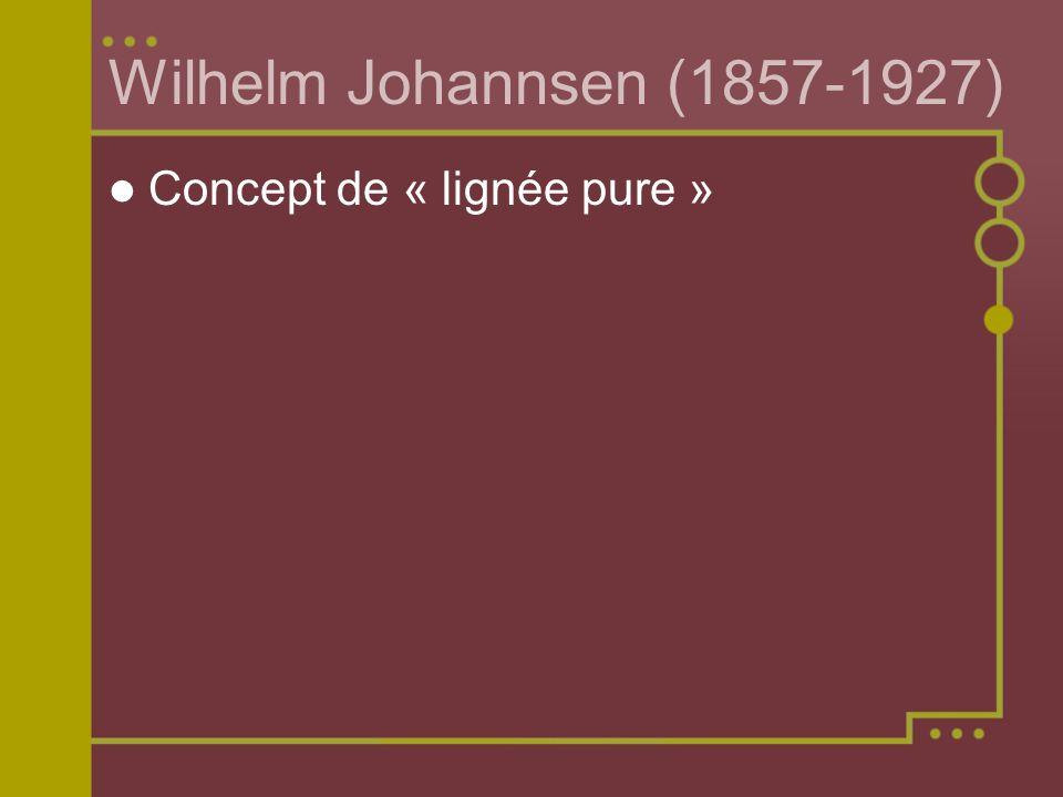 Wilhelm Johannsen (1857-1927) Concept de « lignée pure »