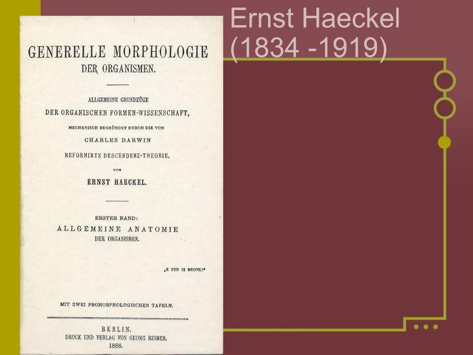 Ernst Haeckel (1834 -1919)