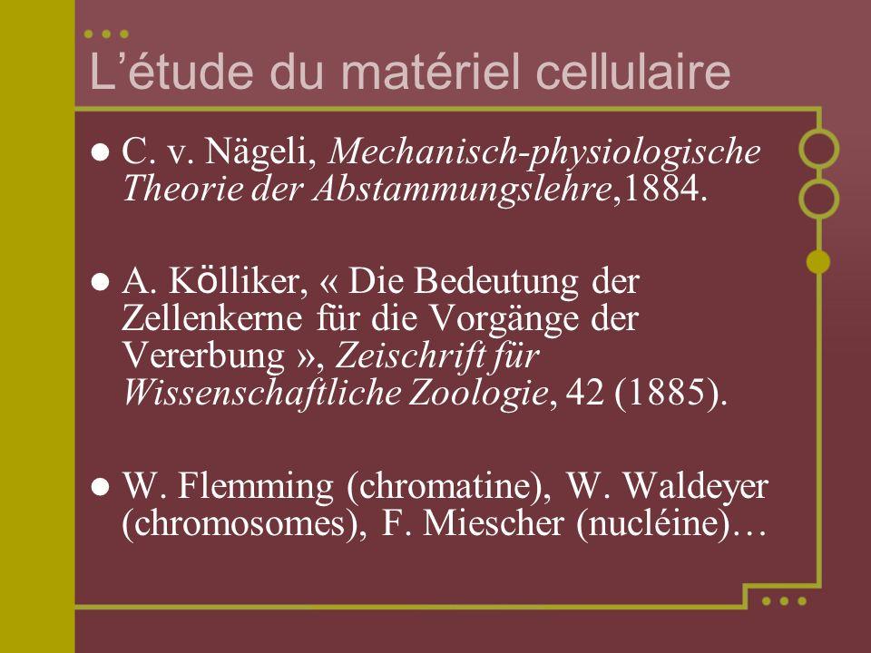 Létude du matériel cellulaire C. v. Nägeli, Mechanisch-physiologische Theorie der Abstammungslehre,1884. A. K ö lliker, « Die Bedeutung der Zellenkern