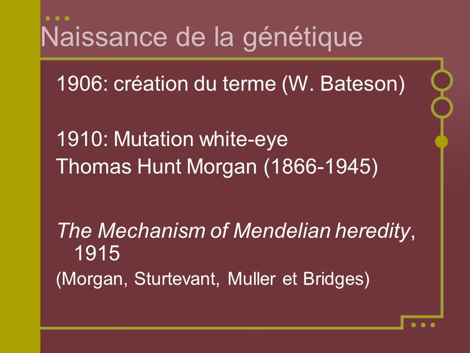 Naissance de la génétique 1906: création du terme (W. Bateson) 1910: Mutation white-eye Thomas Hunt Morgan (1866-1945) The Mechanism of Mendelian here