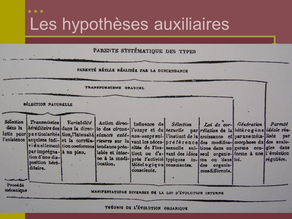 Les hypothèses auxiliaires