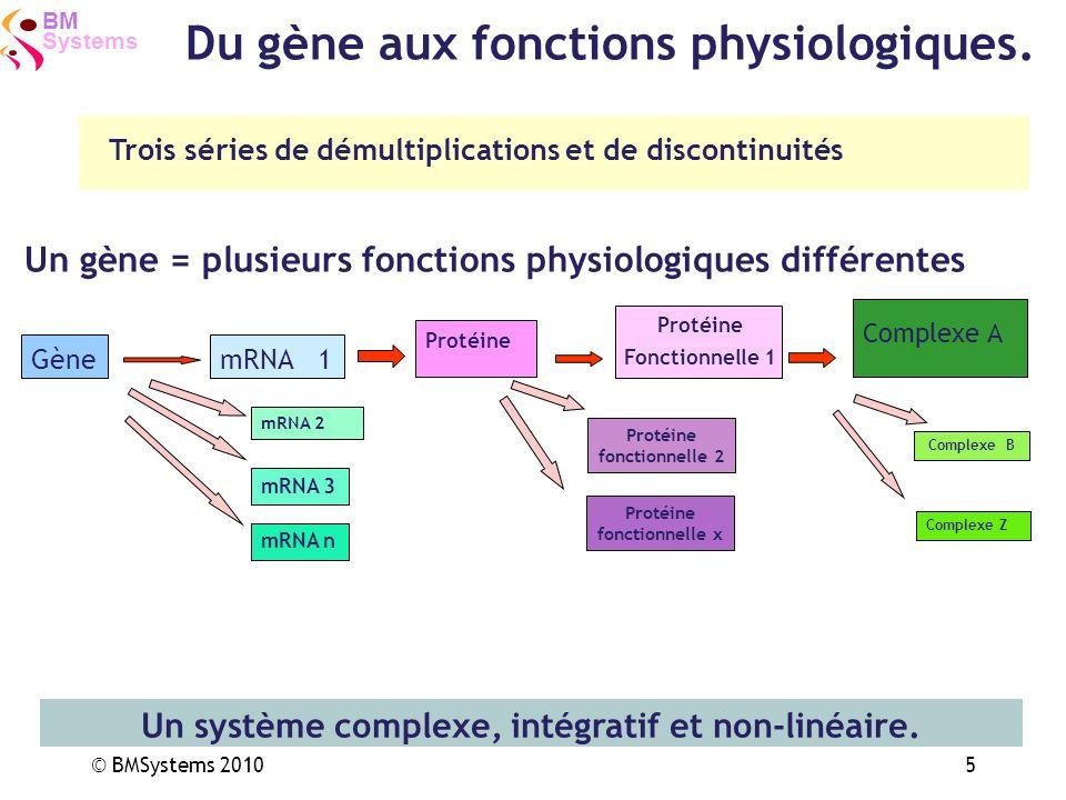 Systems BM © BMSystems 20105 Complexe B Complexe Z Trois séries de démultiplications et de discontinuités GènemRNA1 Protéine Fonctionnelle 1 Protéine