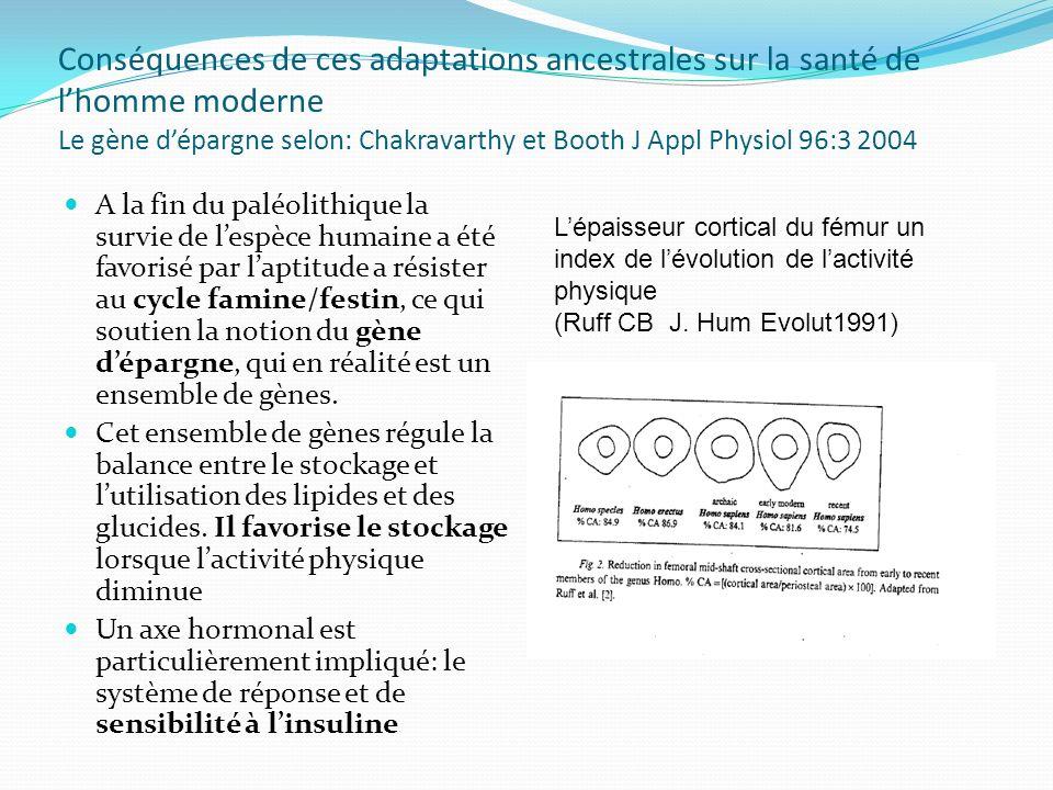 Conséquences de ces adaptations ancestrales sur la santé de lhomme moderne Le gène dépargne selon: Chakravarthy et Booth J Appl Physiol 96:3 2004 A la