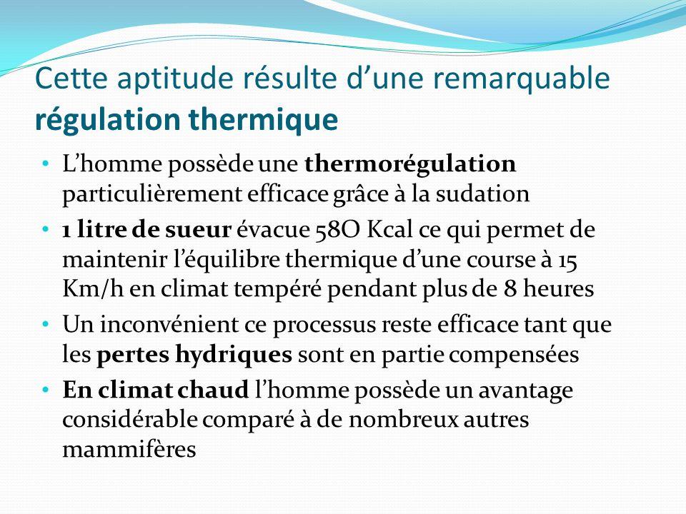 Cette aptitude résulte dune remarquable régulation thermique Lhomme possède une thermorégulation particulièrement efficace grâce à la sudation 1 litre