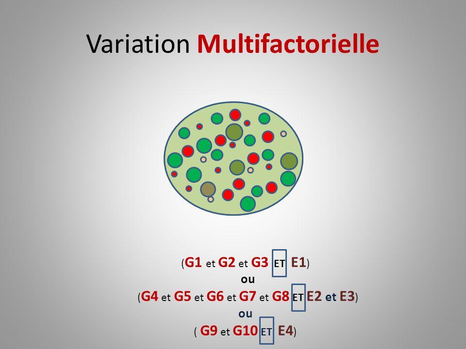 Variation Multifactorielle ( G1 et G2 et G3 ET E1 ) ou ( G4 et G5 et G6 et G7 et G8 ET E2 et E3 ) ou ( G9 et G10 ET E4 )